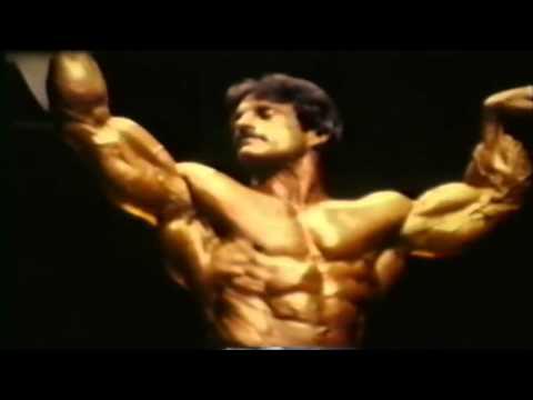 bodybuilding-motivation-never-back-down-1370374852.jpg